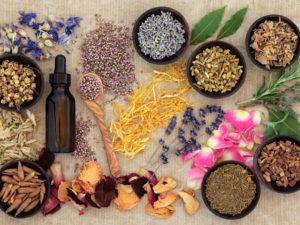 Les Soins Zen_phytothérapie_soins-traditionnels
